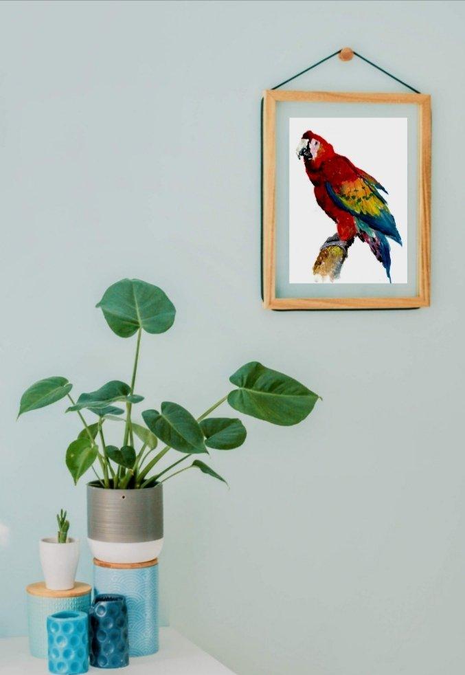 Scarlet Macaw art print hopeasfro